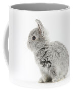 Baby Silver Rabbit Coffee Mug