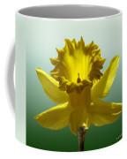 Backlit Daffodil Coffee Mug