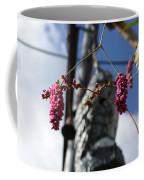 Backyard Beauty Coffee Mug