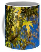 Backyard Leaves Coffee Mug
