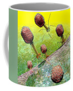 Bacteriophage T4 Virus Group 2 Coffee Mug by Russell Kightley