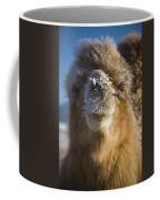 Bactrian Camel Camelus Bactrianus Coffee Mug