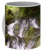 Badger Dingle Coffee Mug