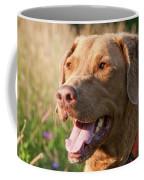 Bailee 1106 Coffee Mug