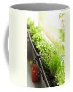 Balcony Herb Garden Coffee Mug by Elena Elisseeva