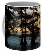 Bald Cypress Trees Growing Coffee Mug