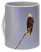 Bald Eagle - Pride Of America Coffee Mug