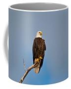 Bald Eagle - Symbol Of Justice Coffee Mug