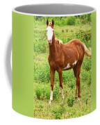 Bald Face Coffee Mug