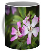 Ballerina Shrub Rose 3303 Coffee Mug