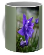 Balloon Flower Profile Coffee Mug