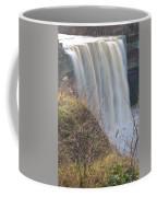 Balls Falls 9931c Coffee Mug