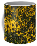 Balsamroot Field In Grand Teton Coffee Mug