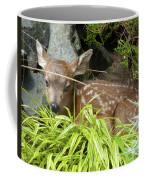 Bambino Coffee Mug