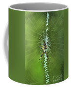 Banana Spider With Web Coffee Mug