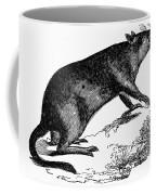Bandicoot Coffee Mug