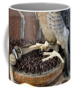 Barbary Falcon Feet Coffee Mug