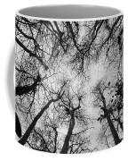 Bare Cypress Coffee Mug