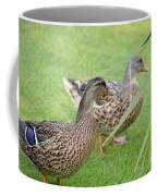 Barefoot Stroll In The Grass Coffee Mug