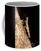 Bark Mantid Coffee Mug