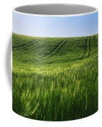 Barley, Co Down Coffee Mug
