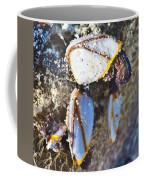 Barnacles Coffee Mug