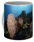 Barrel Sponge On Liberty Wreck, Bali Coffee Mug