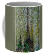 Base Of The Tree View Coffee Mug