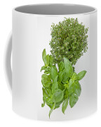 Basil And Thyme Coffee Mug by Joana Kruse