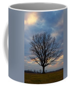 Basking In The Pink And Blue Sky Coffee Mug