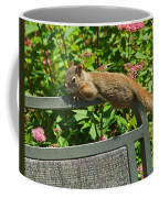 Basking Squirrel Coffee Mug