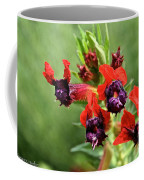 Bat Face Cuphea Coffee Mug