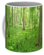 Baton Rouge Blueonnet Swamp  La Coffee Mug