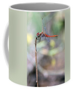 Battling Against The Elements Of Nature Coffee Mug