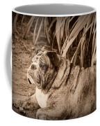 Baydie Coffee Mug
