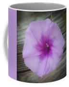Beach Glory Squared Coffee Mug