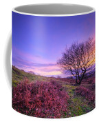 Beacon Hill Sunrise 1.0 Coffee Mug