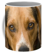 Beagle Hound Dog Eyes Of Love Coffee Mug