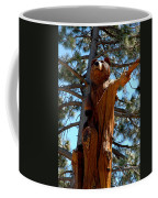 Bear Look Out Coffee Mug