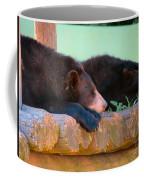 Bear Nap Coffee Mug