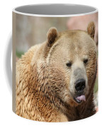 Bear Rasberry Coffee Mug