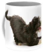 Bearded Collie Pup Coffee Mug