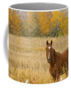 Beautiful Grazing Horse Coffee Mug
