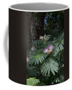 Beautiful Alabama Mimosa Silk Tree Coffee Mug