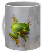 Beautiful American Green Tree Frog On Grunge Background  Coffee Mug