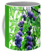 Beautiful Blue Plums On The Tree Coffee Mug