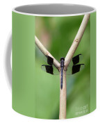 Beautiful Dragonfly Coffee Mug