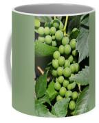 Beautiful Grapes Coffee Mug