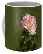 Beautiful Pink And Yellow Climbing Peace Rose Coffee Mug