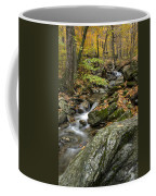 Beautiful Vermont Scenery 18 Coffee Mug